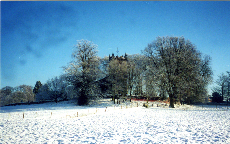 Deric and Jill Cotterill Church in the Trees